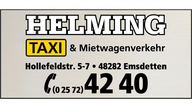 Taxi Helming